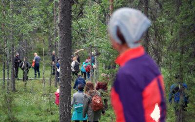 Vienan reitin metsien käsittelyssä saavutettiin yhteisymmärrys