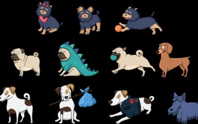 Olgan čuppuni: Presidenttiparin uuši Osku-koira on harvinaista rotuo, šen rotutovarissoja – tenterfield-terjierijä – on Šuomešša vain tipahuš