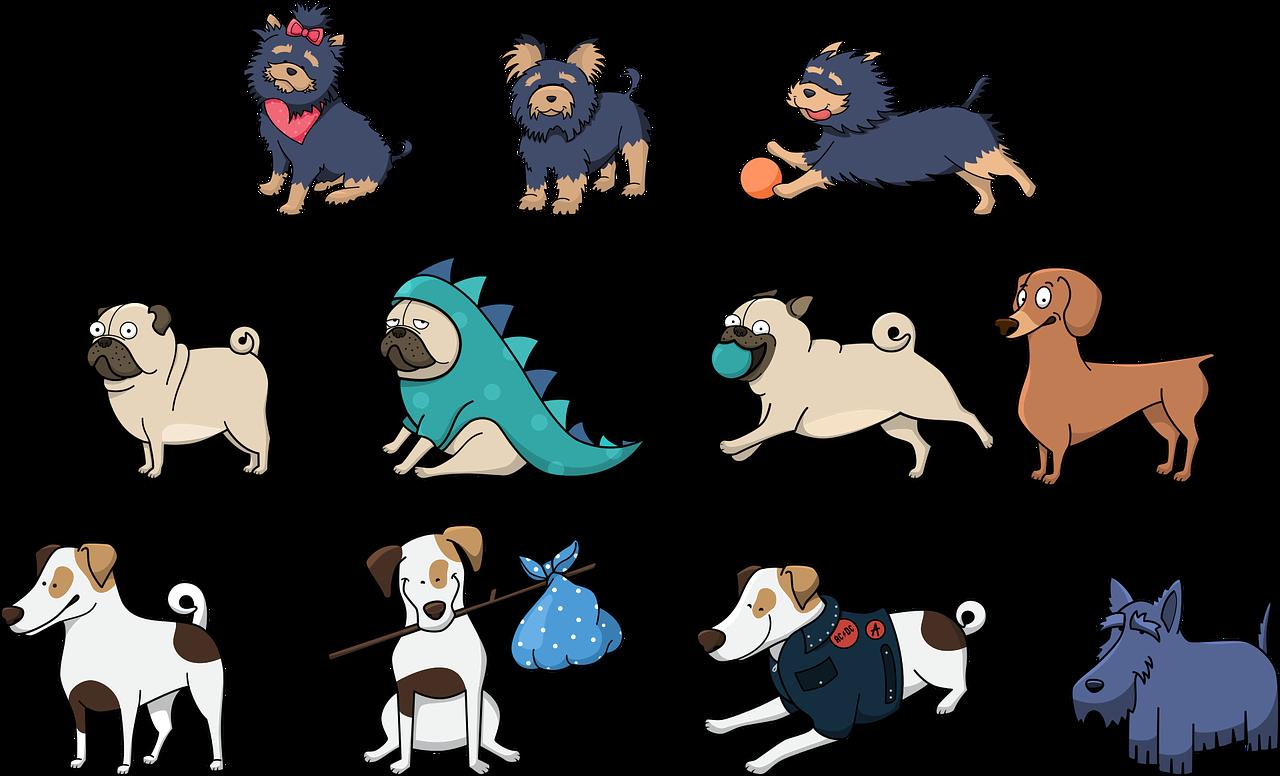 Kuvakollaasi erilaisista koirista