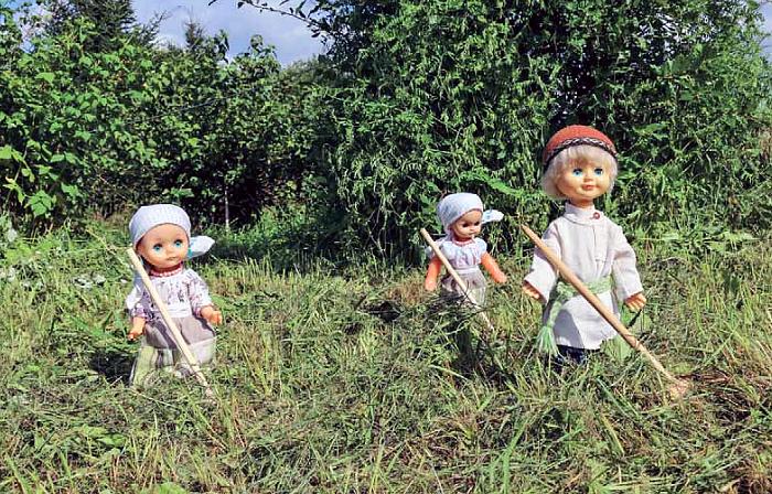 Kolme nukkea pellolla haravoiden kanssa